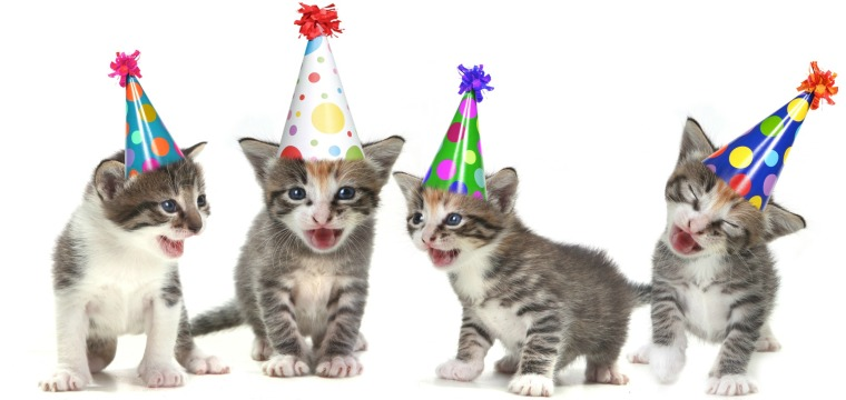 Party_Kittens